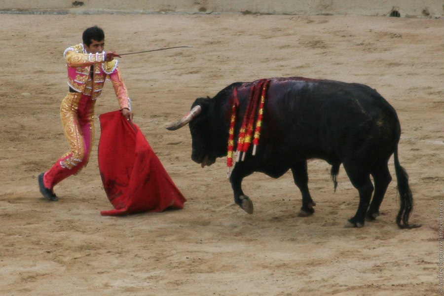 испанская коррида corrida