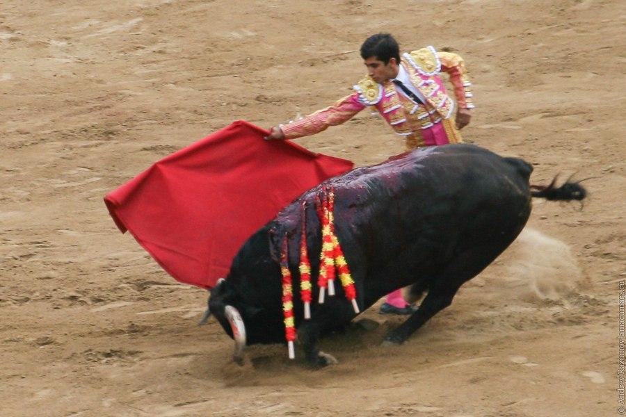 мулета коррида corrida