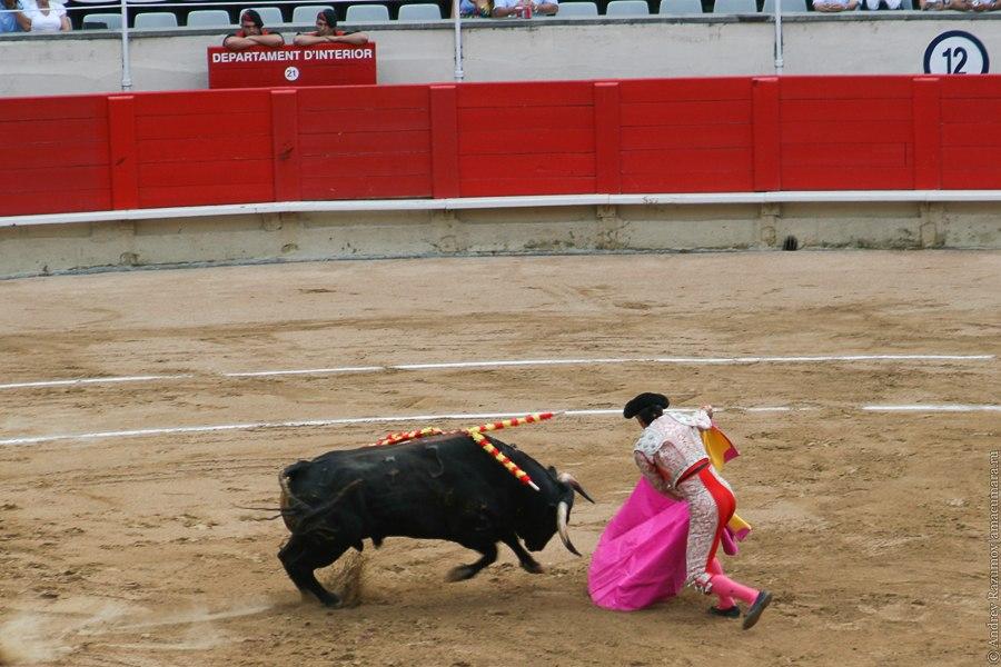 матадор испанская коррида corrida