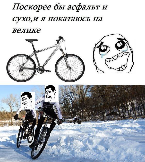 y_cdde64ab.jpg
