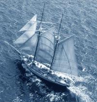 Фантастические парусники / Fantastic sailfishes br / http...
