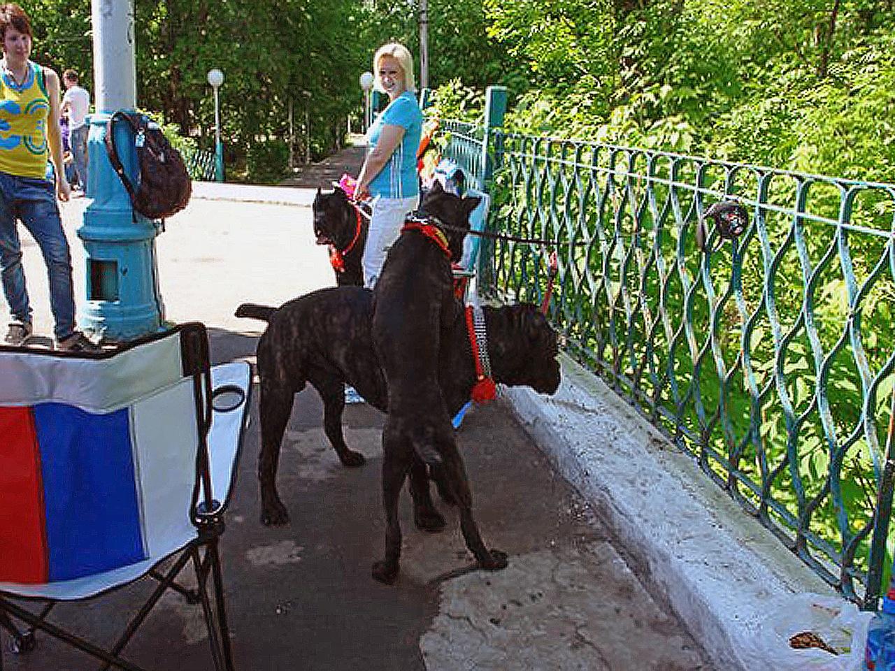 http://cs5800.vkontakte.ru/u252745/95249095/z_7eb36500.jpg