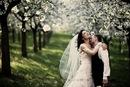 """Свадьба за границей.   """"Exclusive Wedding """" - Агентство свадебных..."""