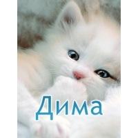 Дима Марозав, 15 октября , Екатеринбург, id141136018