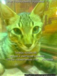 Ваня Феликсов, 17 марта 1998, Нижний Новгород, id171124608