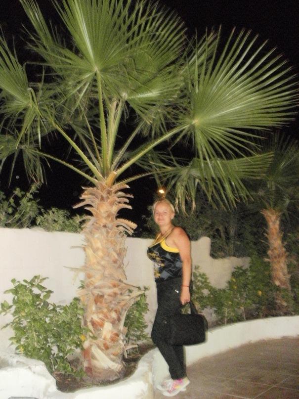 Мои путешествия. Елена Руденко. Египет. 2011 г. Y_94be5ed5