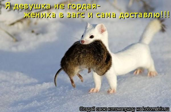 http://cs5816.vk.me/u12879911/146968129/x_5bfe3fee.jpg