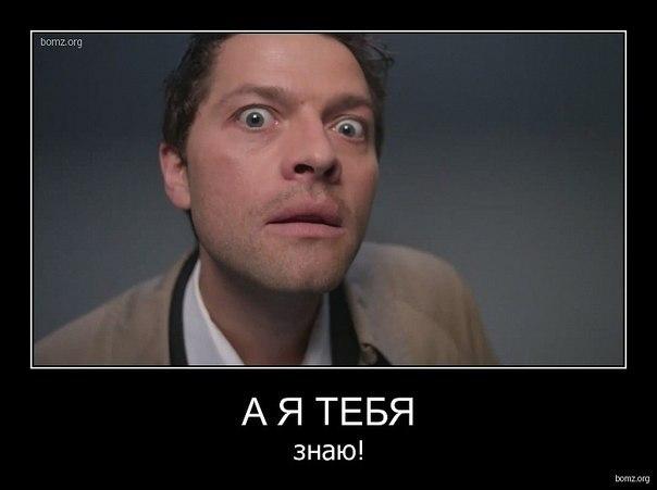Александр Шелестов - фото №14