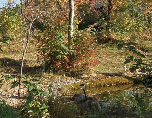 Сад Ириды – туристический бренд Утулика