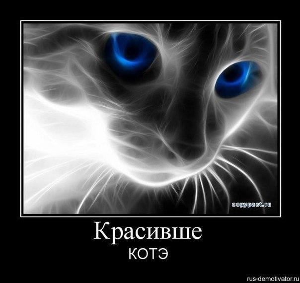 Денис Яковлев | Харьков