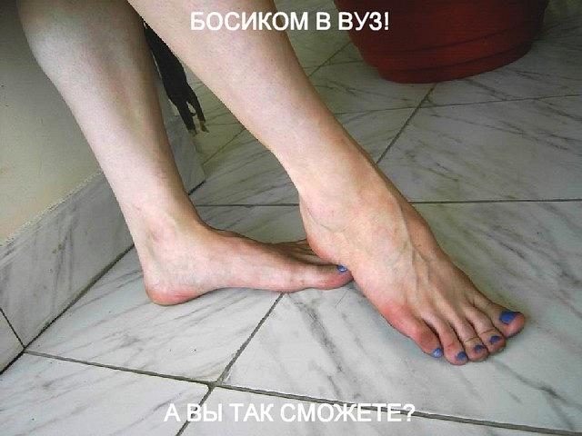 http://cs5847.vkontakte.ru/u12317566/138134008/y_be5fc2e6.jpg