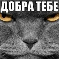 Александр Катасонов, 15 июля , Тюмень, id143642359