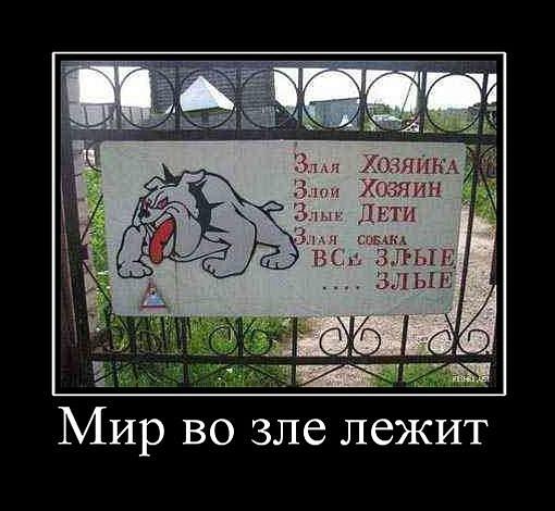 http://cs5849.vkontakte.ru/u14666143/99562025/x_2e84de68.jpg