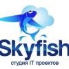 Студия IT проектов Skyfish