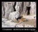 Костя Бондарев, Лахденпохья - фото №7