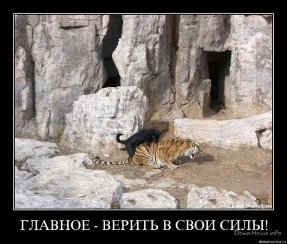 фото из альбома Константина Бондарева №12