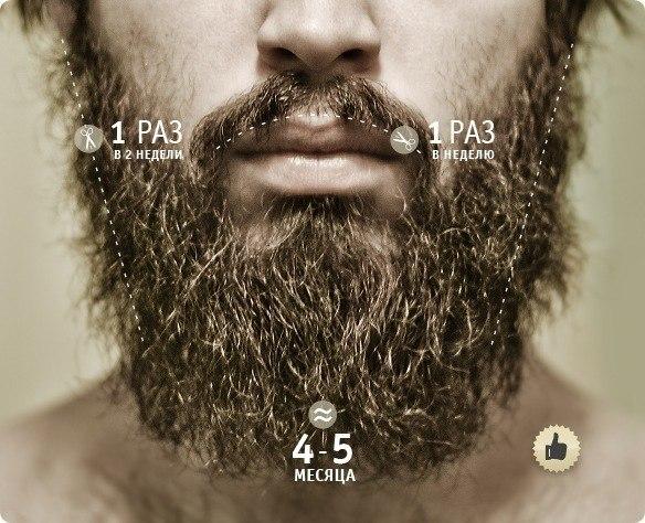Как самому сделать красивую бороду