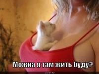 Nety Nety, 25 сентября , Днепропетровск, id100235804