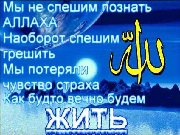 Да убережет нас Аллах от этого...