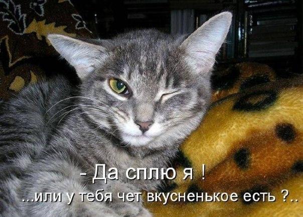 http://cs5887.vk.me/v5887974/3b6/Ezis2TWe2vc.jpg