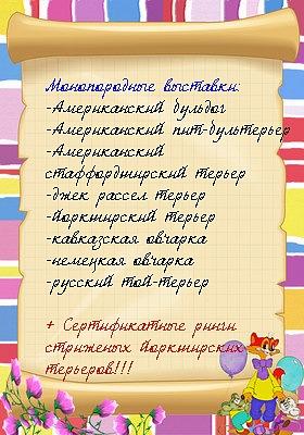http://cs592.vkontakte.ru/u1415943/114014911/x_6e6203f3.jpg