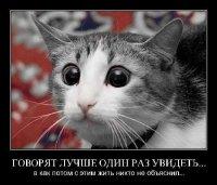 Rerere Rererer, 7 августа , Санкт-Петербург, id78347727