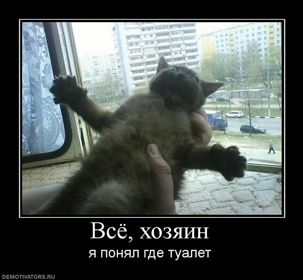 http://cs5920.vkontakte.ru/u20456755/118904604/x_30ecec07.jpg
