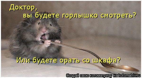 http://cs5926.vk.me/u137402652/-7/x_d76477eb.jpg