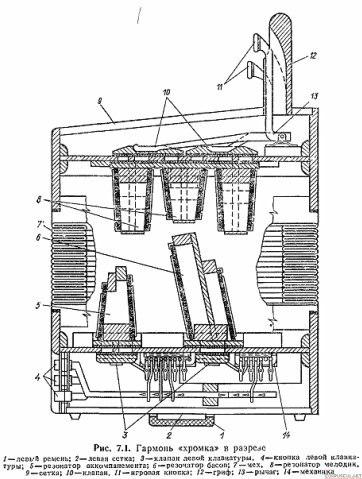 Схема устройства (в разрезе) гармоники-хромки: 1 - гриф, 2 - первый и второй ряды кнопок, 3 - правая сетка, 4...