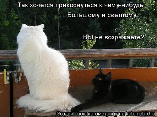 http://cs593.vkontakte.ru/u16920598/42166413/x_13c89b0d.jpg