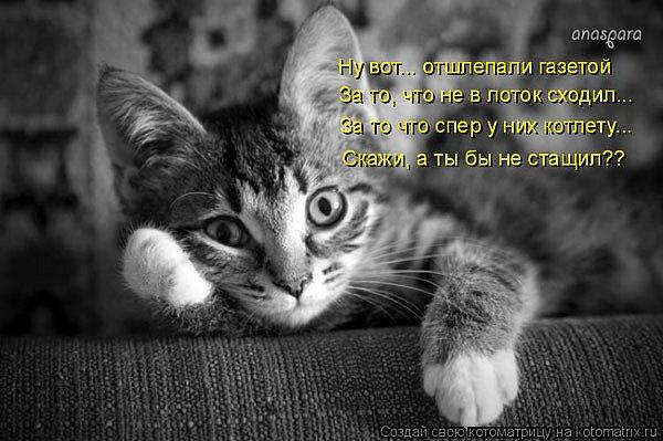 http://cs593.vkontakte.ru/u16920598/42166413/x_623153a8.jpg