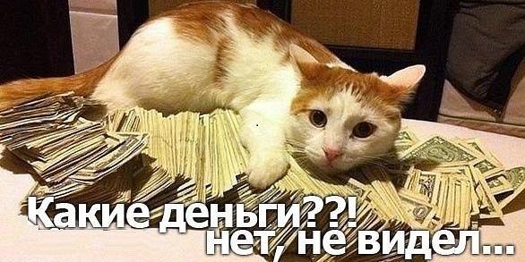 http://cs5932.vk.me/u137374817/152268984/x_3f1c179a.jpg