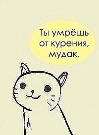 Илья Борец, 22 сентября 1986, Москва, id102377094