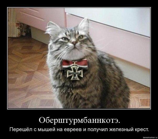 http://cs5940.userapi.com/u26273508/-14/x_76ba430f.jpg