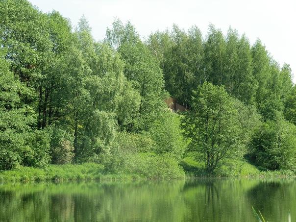 http://cs5958.vkontakte.ru/u252745/20600644/x_4e7cca83.jpg