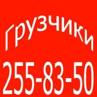 Πетр Πестов, 2 июля 1999, Новосибирск, id171372207