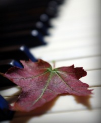Про Пианино, 14 сентября 1996, Москва, id162306821