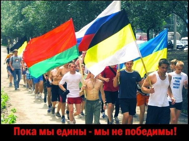 цвета флага белый синий красный