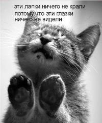 Вікторія Kiss, 1 мая , Ивано-Франковск, id134767573