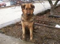 Найда Вдмушная, 20 апреля , Киев, id159695739