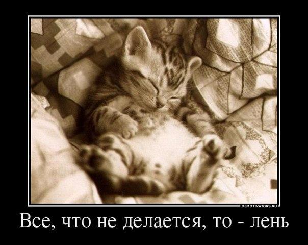 фото из альбома Виталия Федюкова №9