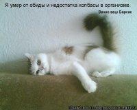 Юра Бокало, 15 января , Львов, id80669460