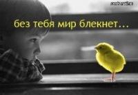 Александр Савин, 21 декабря , Минеральные Воды, id153106596