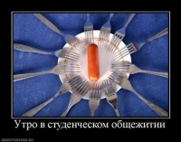 Антон Грибский, 1 сентября 1998, Кемь, id148015078