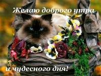 Миша Макаренко, 14 июля , Гомель, id149518579