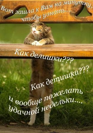 Фото №300737804 со страницы Васи Ласовецького