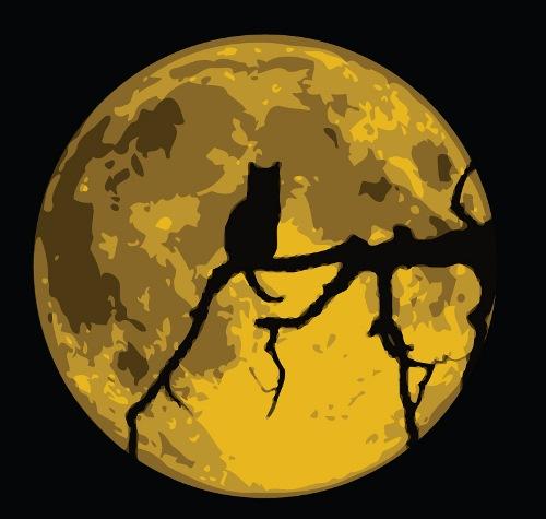"""В этот лунный день нельзя проявлять агрессию, тем более на  """"на пустом..."""