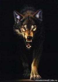 Luna Wolf, 28 октября , Симферополь, id159257516