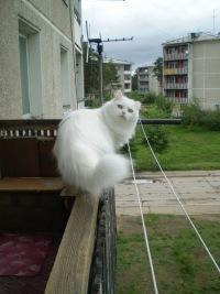 Котэ Белка, 11 мая 1998, Екатеринбург, id162603433