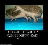 Таня Варина, id162378849